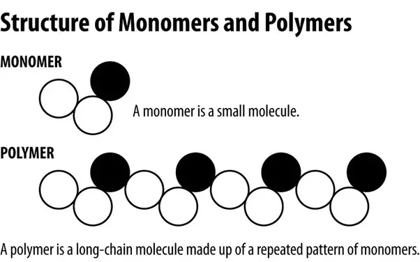 Polymer implies numerous monomers  the characterization