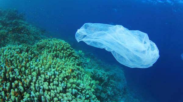 Plastic waste in ocean waters
