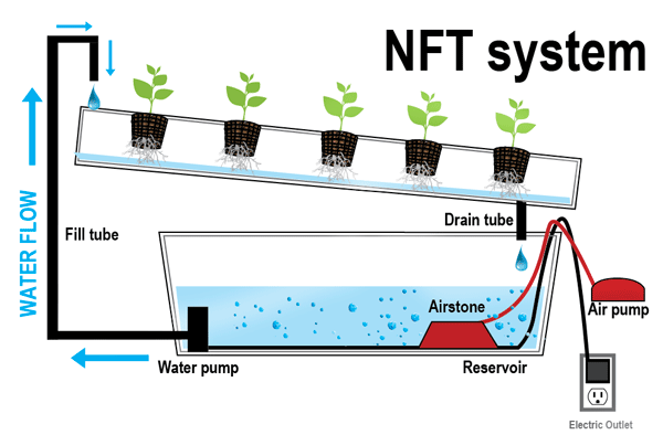 how to set up nft system with plastic tools made from calcium carbonate masterbatch