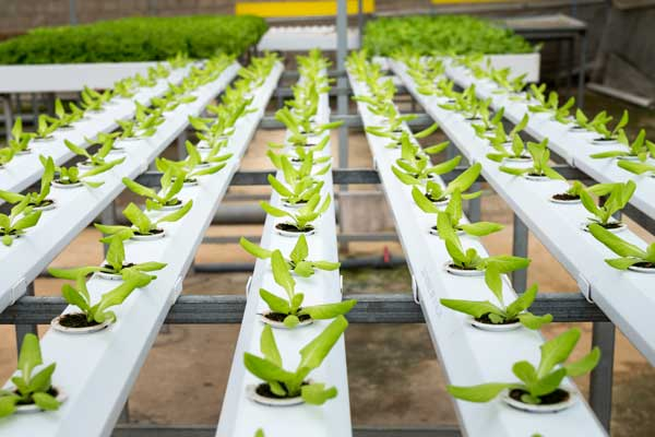 which are plastics suitable in agriculture to produce garden tools